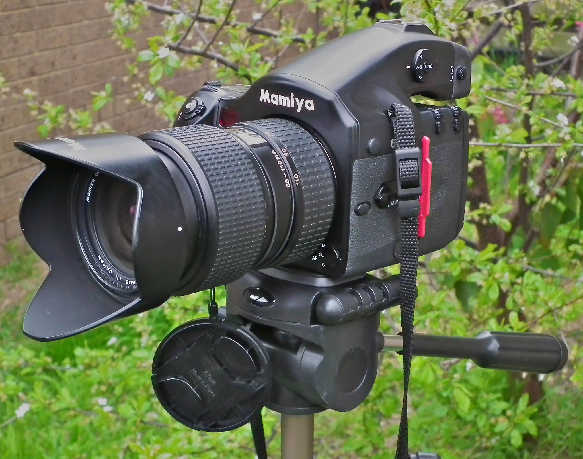 Mamiya 645 afd ii and leaf shutter lenses.